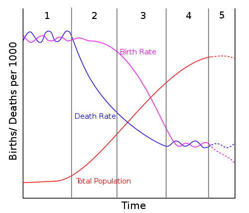 Demographic transition with Stage 5